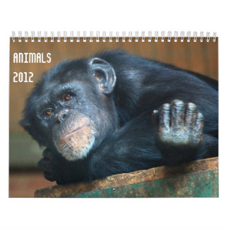 Kalender der Tier-2012