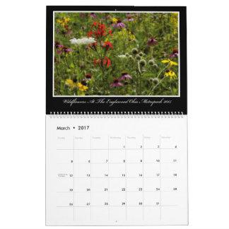 Kalender der Wildblumen-2017 durch Thomas Minutolo