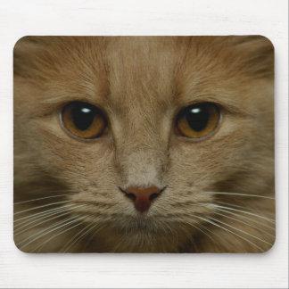 Kalender-Katze Mousepads