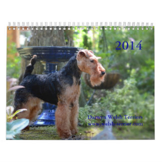 Kalender Walisers Terrier 2014 durch Darwyn
