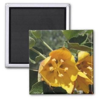 Kalifornien-Flanell Bush Quadratischer Magnet