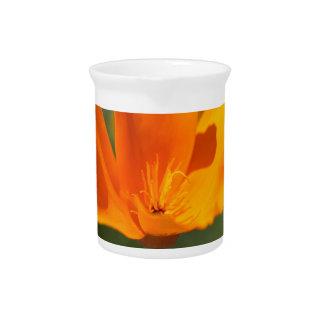 Kalifornien-Mohnblume (Eschscholzia californica) Getränke Pitcher
