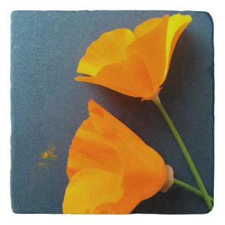 Kalifornien-Mohnblumen auf Blau Töpfeuntersetzer