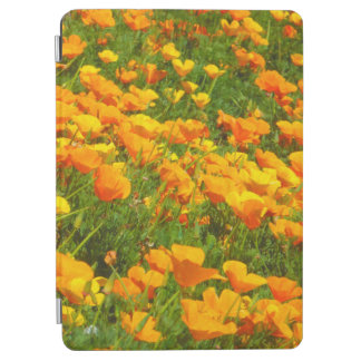 Kalifornien-Mohnblumen iPad Air Cover