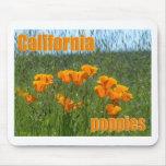 Kalifornien-Mohnblumen Mousepads