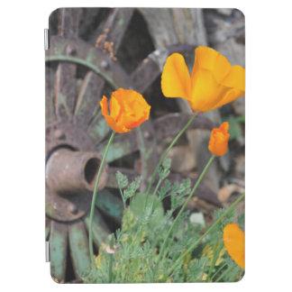 Kalifornien-Mohnblumen rustikal iPad Air Hülle