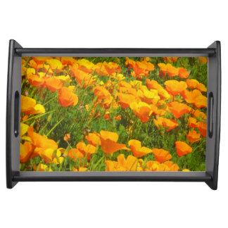 Kalifornien-Mohnblumen Tablett