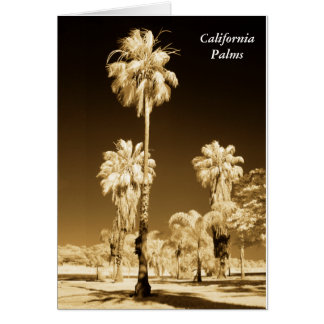 Kalifornien-Palme-Infrarot-Karte Karte