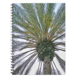 Kalifornien-Palme Spiral Notizblock