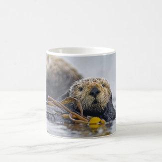 Kalifornien-Seeotter Kaffeetasse