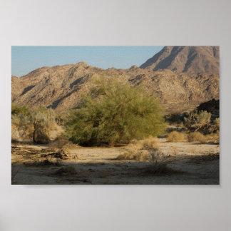 Kalifornien-Wüste Poster