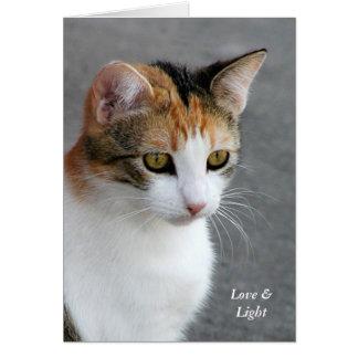 Kaliko-Katzen-Liebe u. Licht Karte