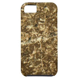 Kalkstein unter dem Mikroskop Hülle Fürs iPhone 5
