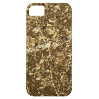 Kalkstein unter dem Mikroskop iPhone 5 Etui