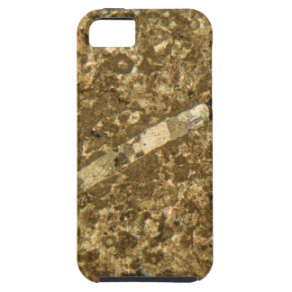 Kalkstein unter dem Mikroskop iPhone 5 Hüllen