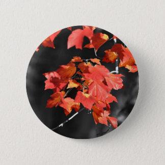 Kalter Fall Runder Button 5,1 Cm