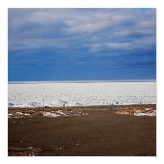 Kaltes See-Landschaftsplakat Poster