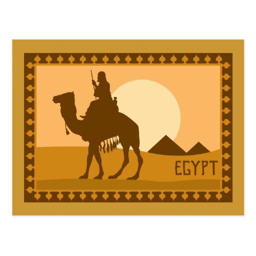 Kamel Ägypten Postkarte