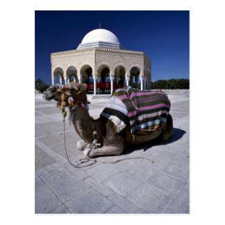 Kamel das vor Haube Monastir Tunesien Postkarte