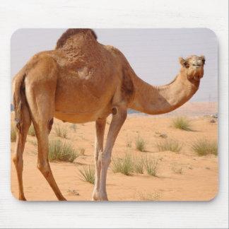 Kamel für Araber-Mausunterlage Mauspad