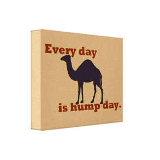 "Kamel ""jeden Tag ist Buckel-Tag "" Leinwanddruck"