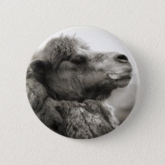 Kamel-Knopf Runder Button 5,1 Cm