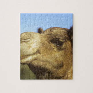 Kamel Puzzle