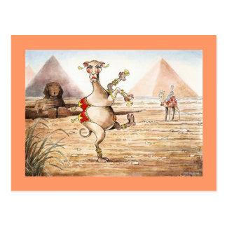 Kamel-Tanz-Postkarte Postkarten