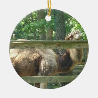Kamel-Verzierung von Cape May Zoo New Jersey Keramik Ornament