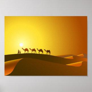 Kamele am Sonnenuntergang-Plakat Poster