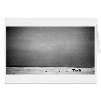 Kamele in der Wüste - Jordanien 1990 Karte