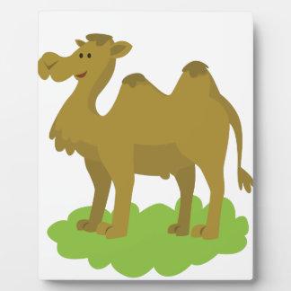 Kamelgehen hoch fotoplatte
