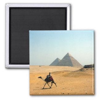 Kamelpyramide Kühlschrankmagnet