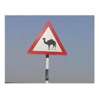 Kamelüberfahrt Postkarte
