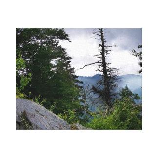 Kamin Spitzen-Spur bei Great Smoky Mountains Leinwanddruck
