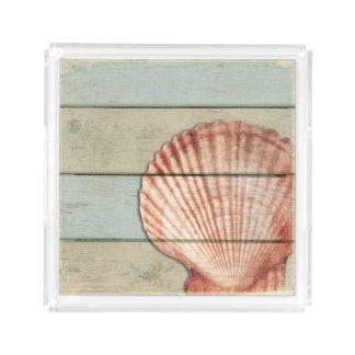 Kamm-Muschel-Muschel Acryl Tablett