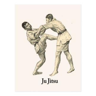 Kampfkünste Ju jitsu 15 Postkarten