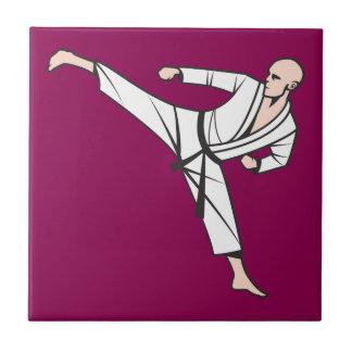Kampfsport martial arts fliesen