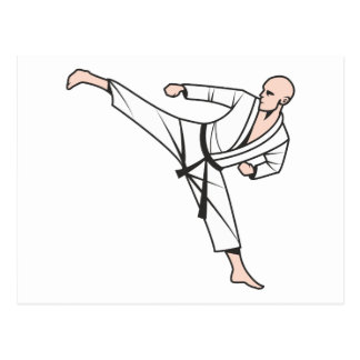 Kampfsport martial arts postkarte