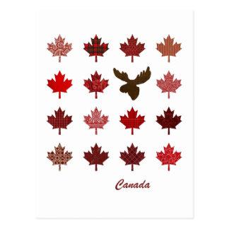 Kanada-Ahornblatt- und -elchpostkarte Postkarte