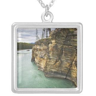 Kanada, Alberta, Jaspis-Nationalpark, Athabasca Versilberte Kette