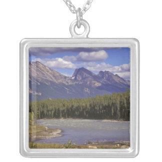 Kanada, Alberta, Jaspis-Nationalpark. Groß Versilberte Kette