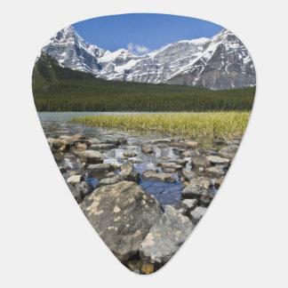 Kanada, Alberta, Rocky Mountains, Plektron