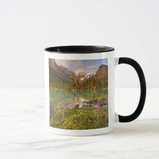 Kanada, Britisch-Columbia, Yoho Nationalpark. 2 Tasse