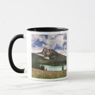 Kanada, Britisch-Columbia, Yoho Nationalpark. 3 Tasse
