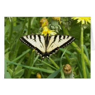 Kanadischer Tiger-Frack-Schmetterling Notecard Karte