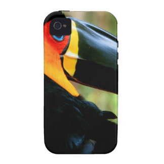 Kanal-berechnetes Toucan. iPhone 4/4S Cover
