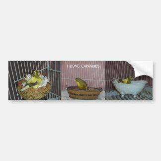 Kanarienvögel der Liebe I Autoaufkleber