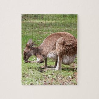Känguru, Hinterland Australien Puzzle