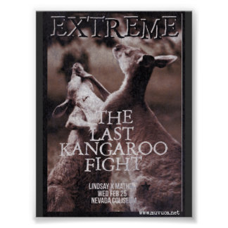 Kängurukampf Poster